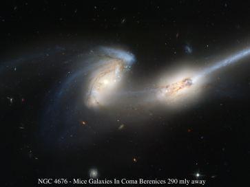 «Մկներ» գալակտիկաները