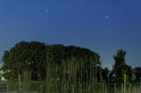 Գիսավորի լուսանկրաը Բուենոս Այրեսից Լուիս Արգերիխի կողմից